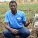 Liquid Telecom partners with Twiga Foods