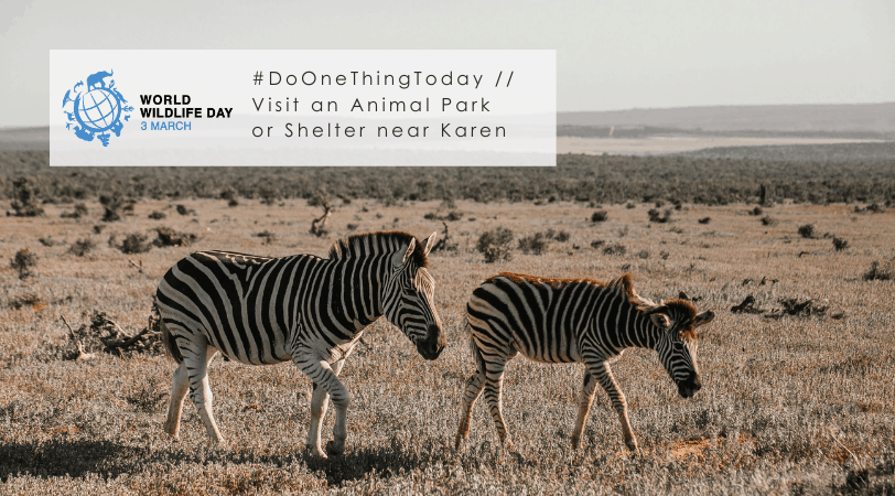 Karen Work & Play // 9 Wildlife Friendly Places to Visit