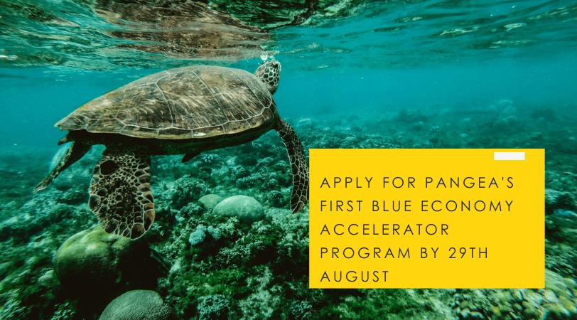 Pangea Blue economy accelerator program