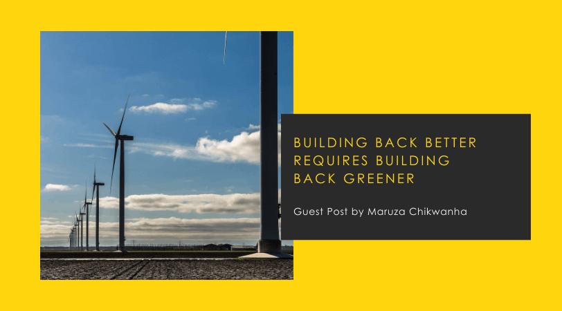 Building Back Better